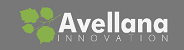 Avellana Visual Consulting - working with Clients to apply Lean Innovation methods